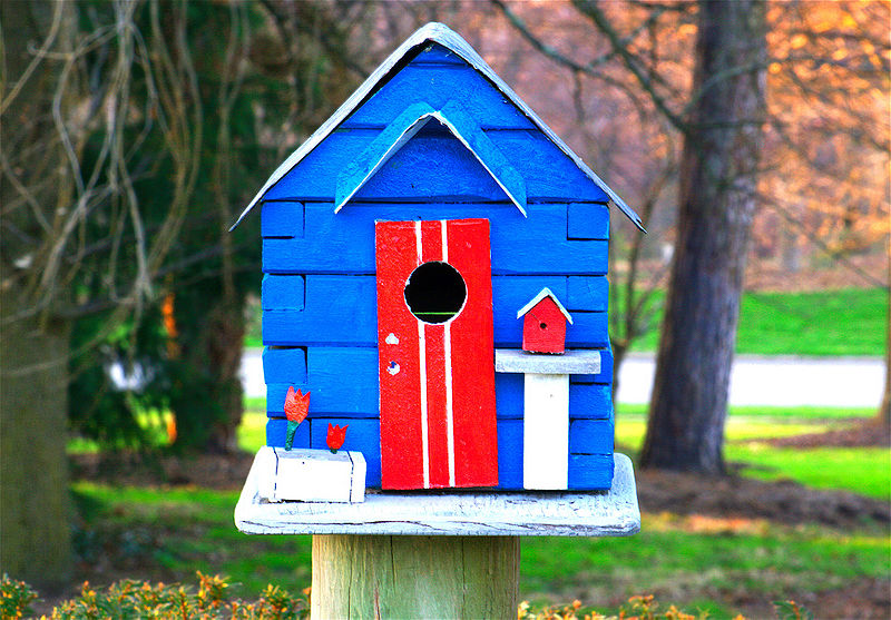 How to build a birdhouse with your kids the fathers 39 lounge for Different types of birdhouses